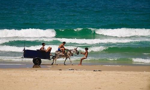 Foto van een jongen die op het strand trekt aan een ezel met een kar