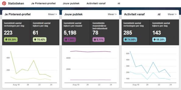 Over je volgers en kijkers zie je wat de maandelijkse betrokkenheid is en ook gegevens over afbeeldingen van je website zijn zichtbaar.